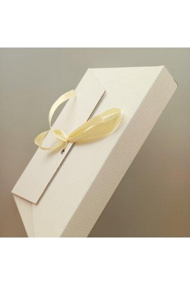 Dovanų dėžutė III 2